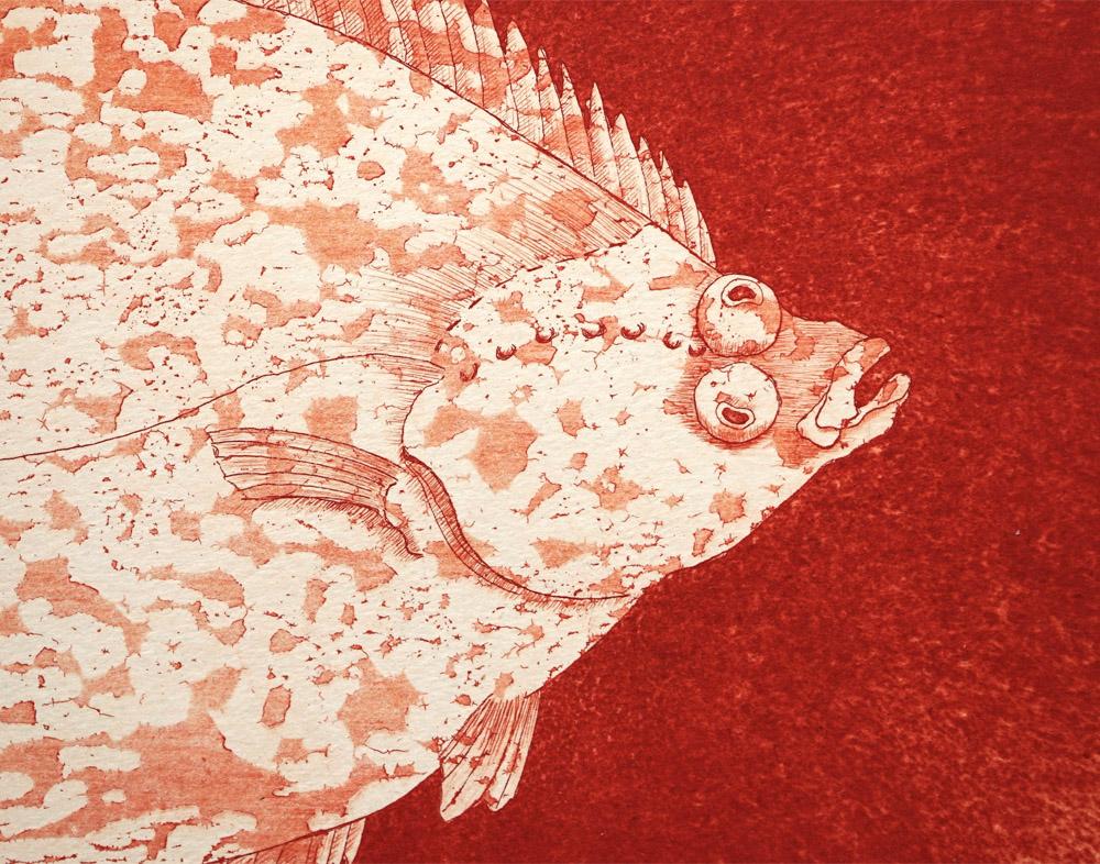 Radierung – Plattfisch (Ausschnitt)