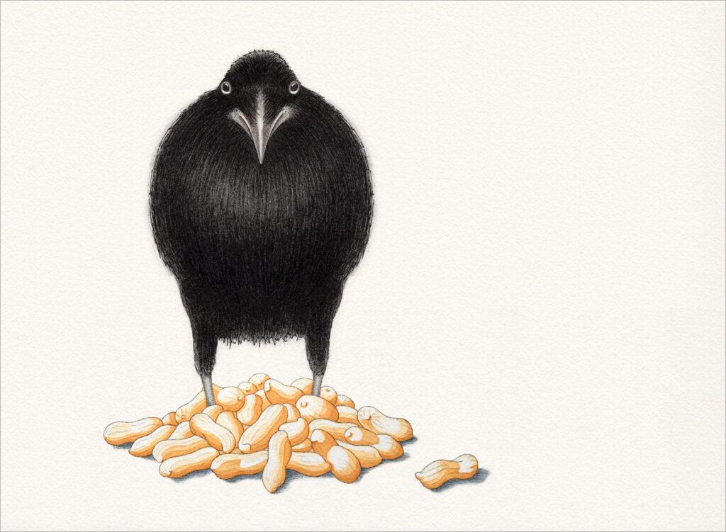 Zeichnung – Geheimnüsse eines Raben